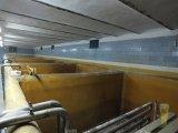 image fermentacja-jpg